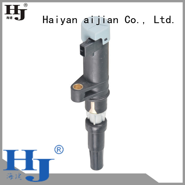 Haiyan High-quality how much is an ignition coil company For Opel