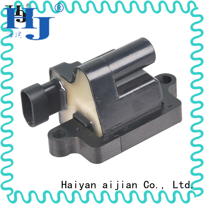 Haiyan Custom what is the best ignition coil for business For Opel