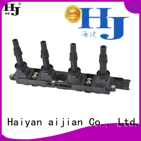 Haiyan Wholesale ve ignition coils company For car