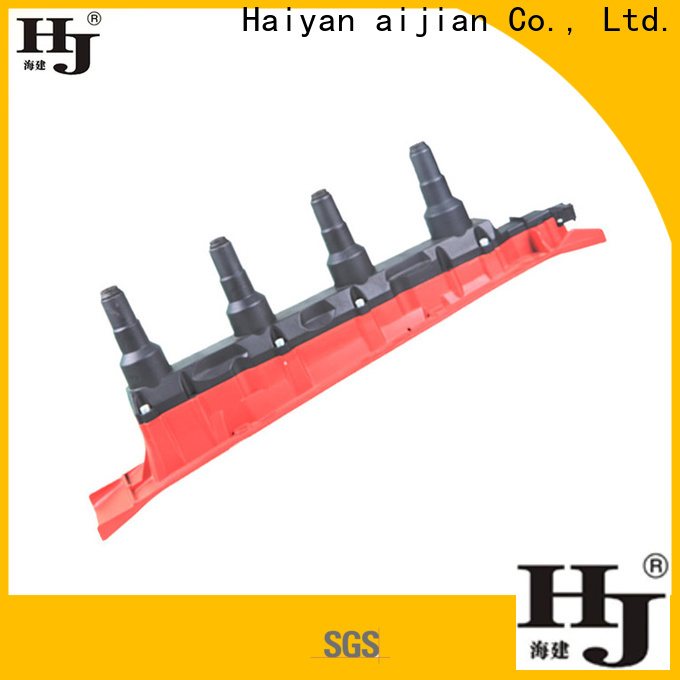 Haiyan electronic ignition coil for business For Opel