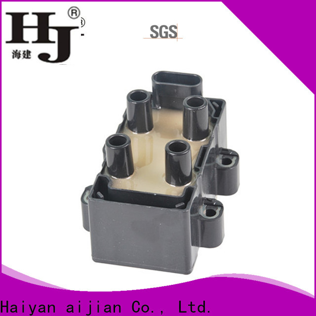 Haiyan Top how to fix ignition coil factory For Opel